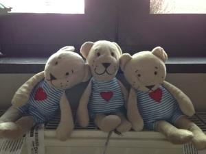 Nounoutch (aau centre) et ses petites frères :-)